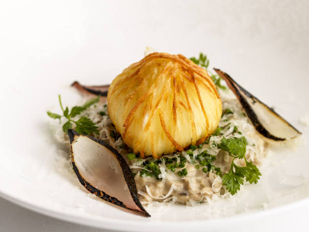 Mushroom risotto with crispy egg and aged Parmesan