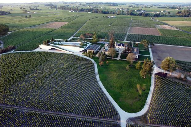 Cheval Blanc used a third less of Cabernet Franc grapes than usual due to frosts, the unusually large percentage of Cabernet Sauvignon in the blend created one of the most fascinating wines from 2017