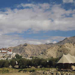 Chamba Camp Thiksey in the Indus Valley, Ladakh