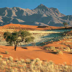 NamibRand Nature Reserve, Namibia, the location of Wolwedans Dunes Lodge