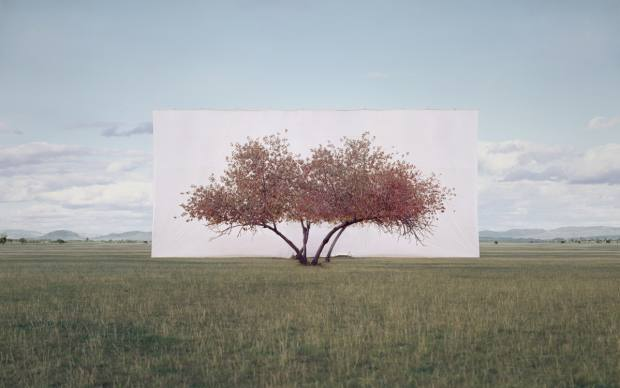Tree..., 2012, by Myoung Ho Lee, which appears in the Hayward exhibition at the Southbank Centre from March 4