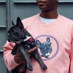 Embroidered cotton sweatshirt, £100