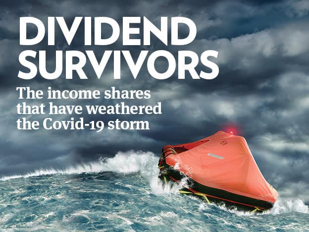 Dividend Survivors