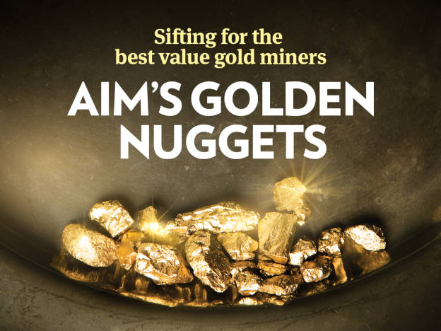 Aim's golden nuggets