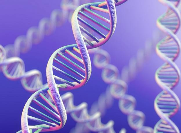 Genomics approaches 'critical mass' on data