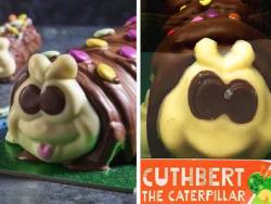 What can investors learn from the Colin the Caterpillar cake war?
