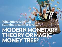 Modern monetary theory or magic money tree?