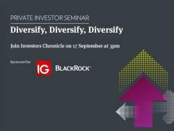 Diversify, diversify, diversify 17 September 2020