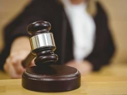 Bargain shares: Backing litigation funding winners