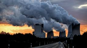 Article image: Businesses rally behind global carbon pricing strategy