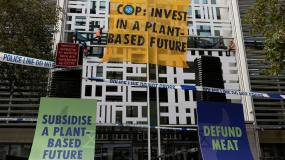 Article image: The need to elevate developing countries at COP26