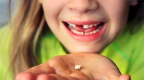 Article image: Milk teeth/S&P 500: a fairy exchange