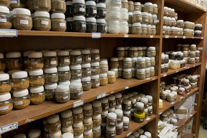Rise in Iranian traditional medicine as Covid crisis grows ảnh 4