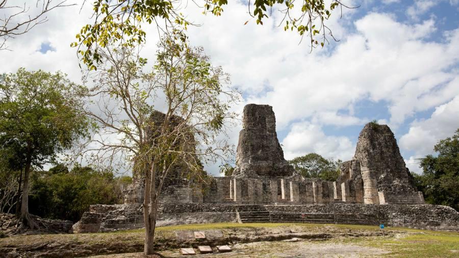 Maya Train is in danger of derailing in Mexico's precious biosphere
