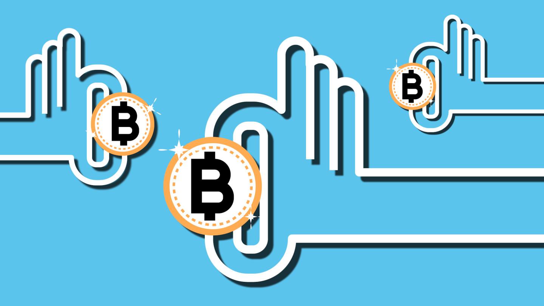 most bitcoin holder